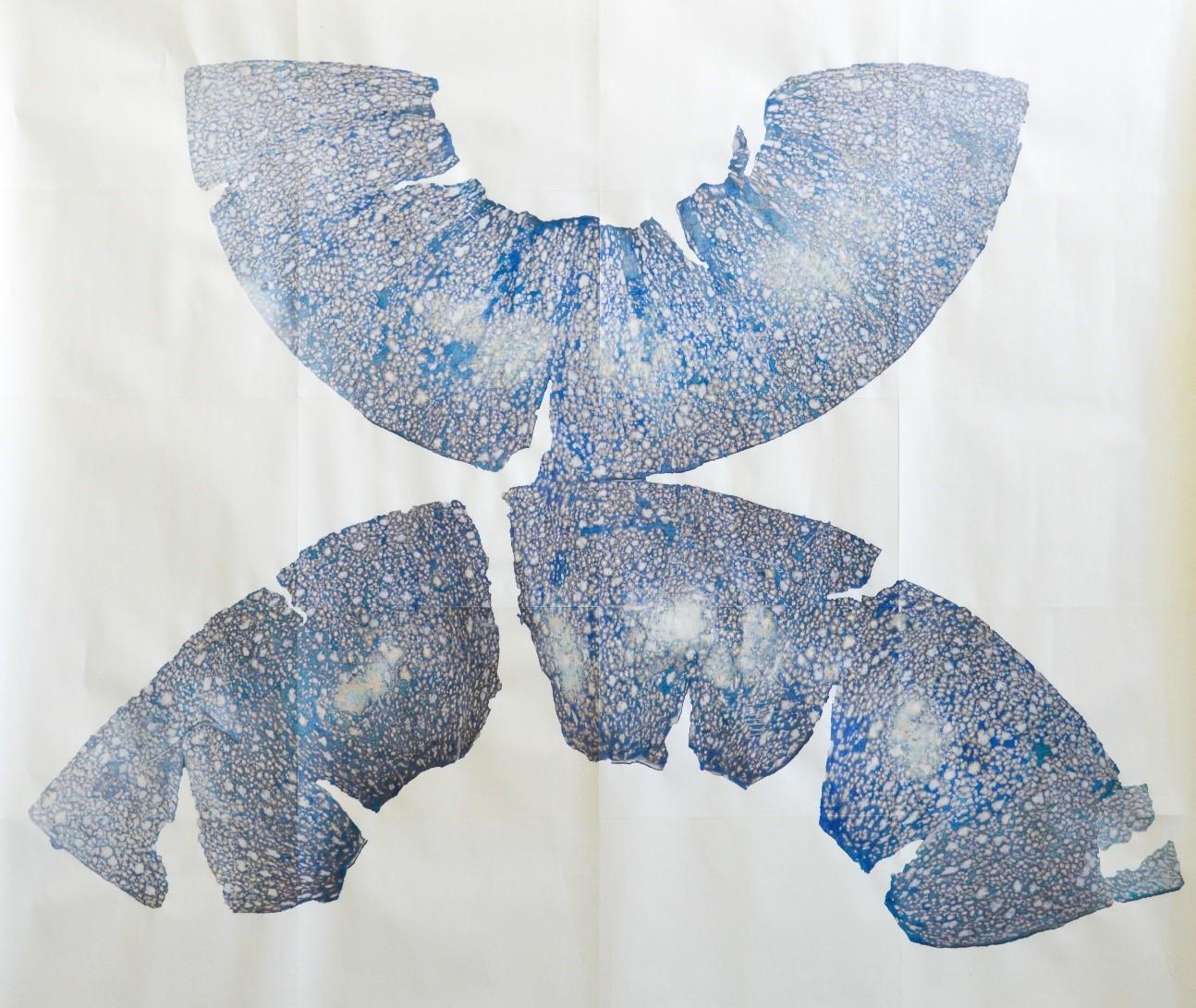 Rika Tanaka, Les Mundis - Cucurbita, eau, encre, impression jet d'encre sur papier, 205 x 120cm, 2017.