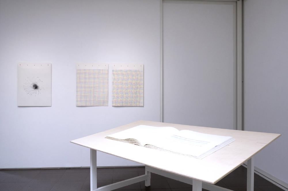 """Vue de l'exposition """"Franchir le Rubicon"""" de Pierre Galopin. Photo : JBL"""