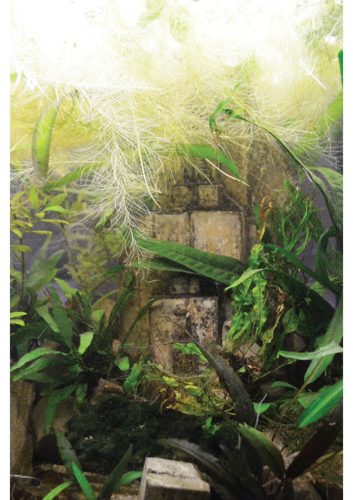 Panneau d'exposition 13