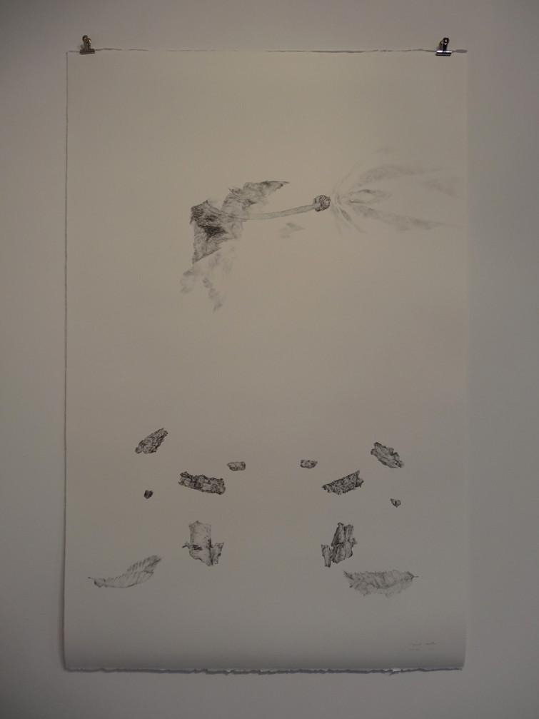 Noémie Sauve, L'instrument d'observation - Dessin sur papier moulin du gué, 130x80cm, 2015. Mine graphite.