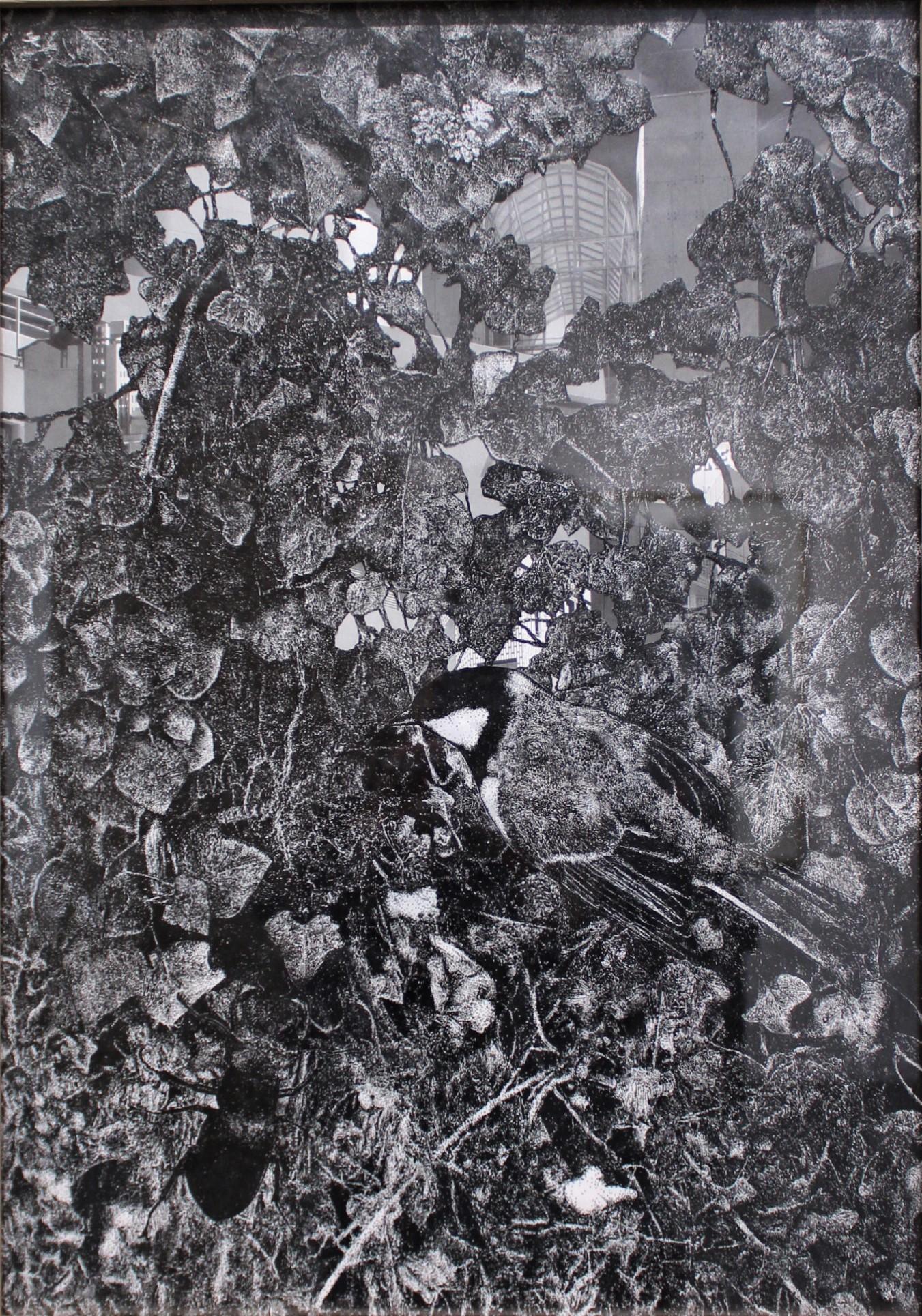 Quentin Montagne. A vol d'oiseau #3, 2019. 42 x 29.7 cm. Encre de Chine sur papier calque, photographie découpée, scotch.