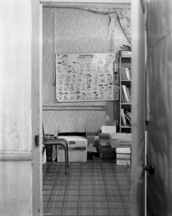 Photo : Marc Loyon, école Gimbert de Guignen, 15 janvier 2015. DR