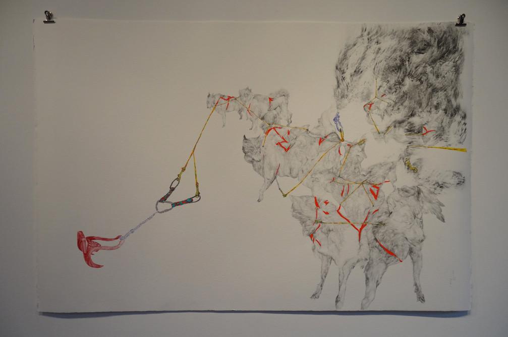 Noémie Sauve, L'attelage - Dessin sur papier moulin du gué, 130x80cm, 2015. Mine graphite, fusain, Bic, feutre, stylos divers.