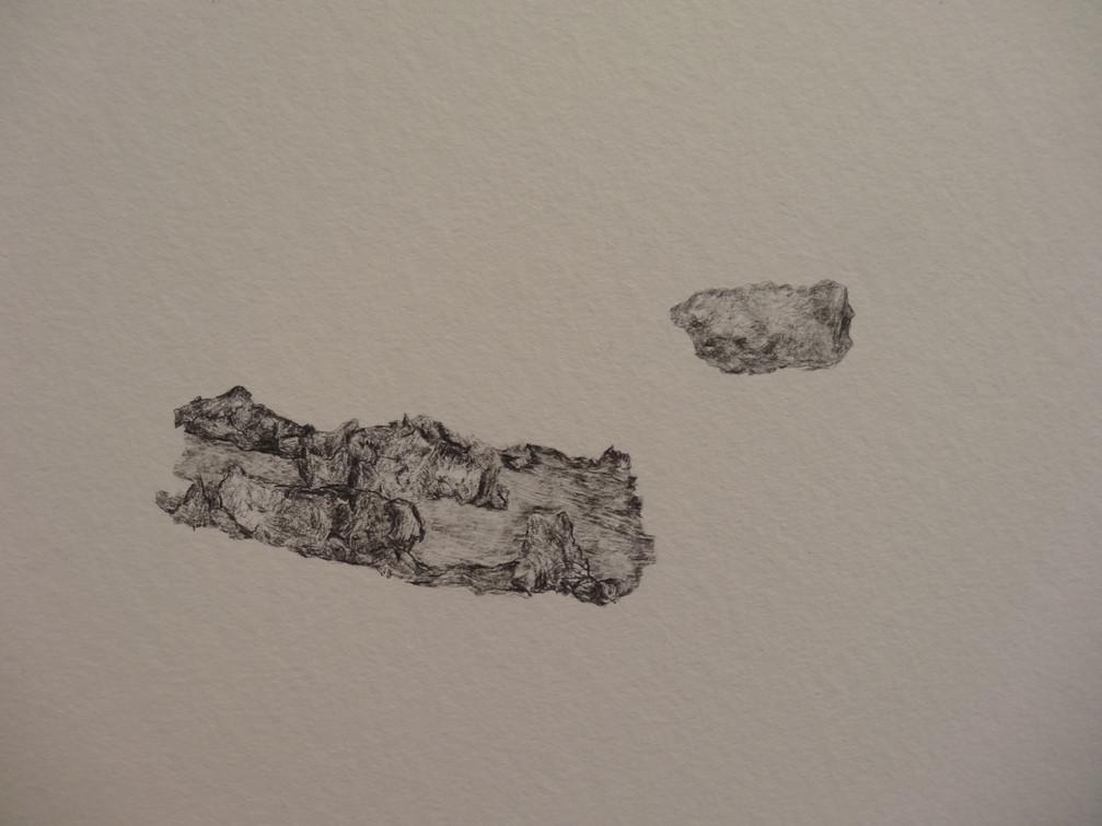 Noémie Sauve, L'instrument d'observation (détail) - Dessin sur papier moulin du gué, 130x80cm, 2015. Mine graphite.