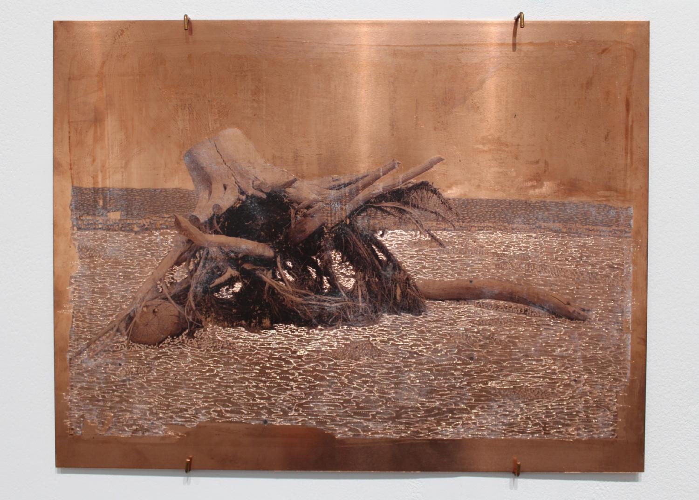 Raphaëlle Peria, Les déracinés #2, transfert sur cuivre gravé, 40 x 30 cm, 2020