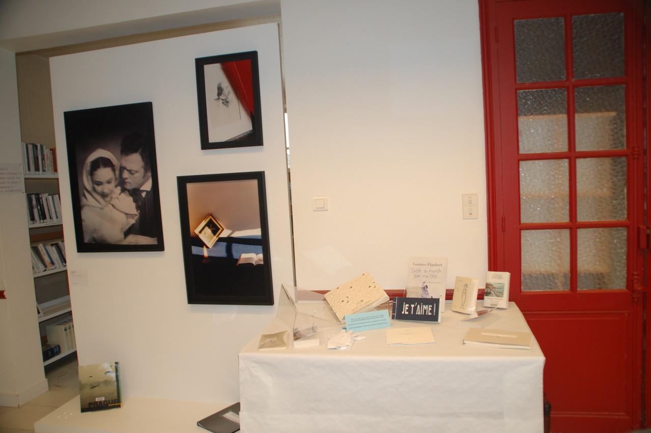 Livres d'artistes et vue d'exposition bibliothèque d'Iffendic - Madji Senadji, série Bovary, 1994/2002. Coll. FRAC Bretagne