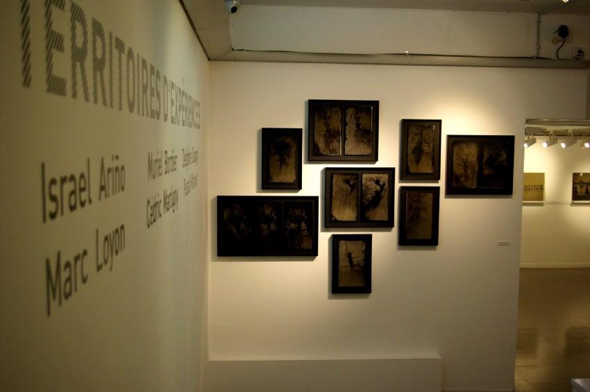 Vues de l'exposition Territoires d'expériences. DR Carré d'art