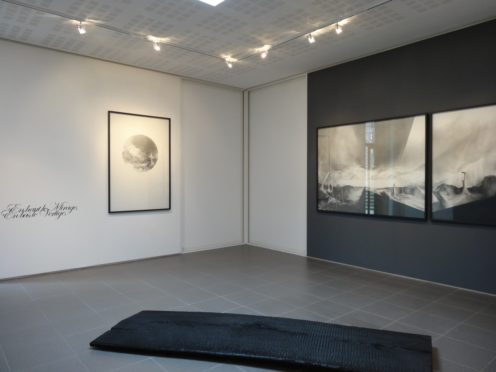 Vues de l'exposition Angélique Lecaille, After Dawn, 2014.