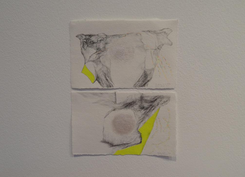 Noémie Sauve, Contre nuit et La Réserve et le filtre - Dessin, mine graphite, crayon de couleur, feutre, pigment nacré, 14,5x9cm, 2015