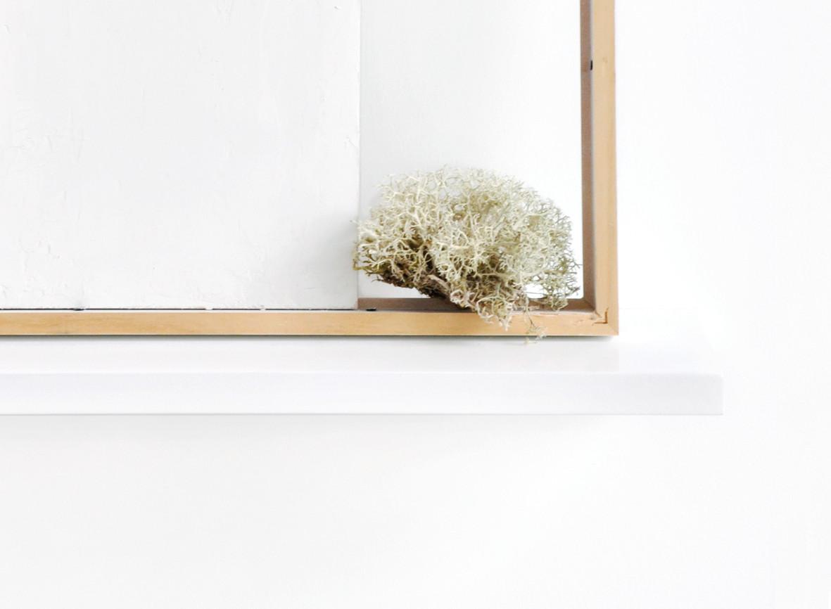 Estèla Alliaud, Sans titre (détail). Etagère, cadre, contreplaqué recouvert de porcelaine crue, lichen, 44 x 40 x 14,5 cm, 2015.