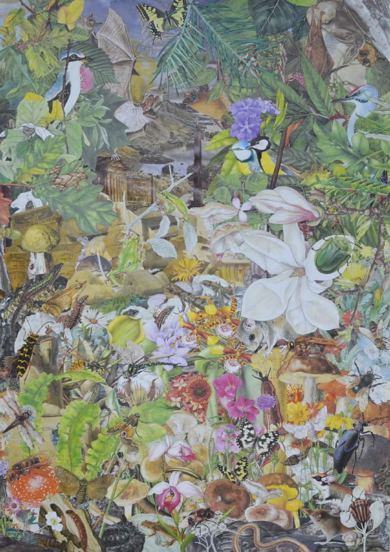 Quentin Montagne, Le Volcan, 2020. Illustrations découpées et collées sur papier, 63,7 x 45 cm.