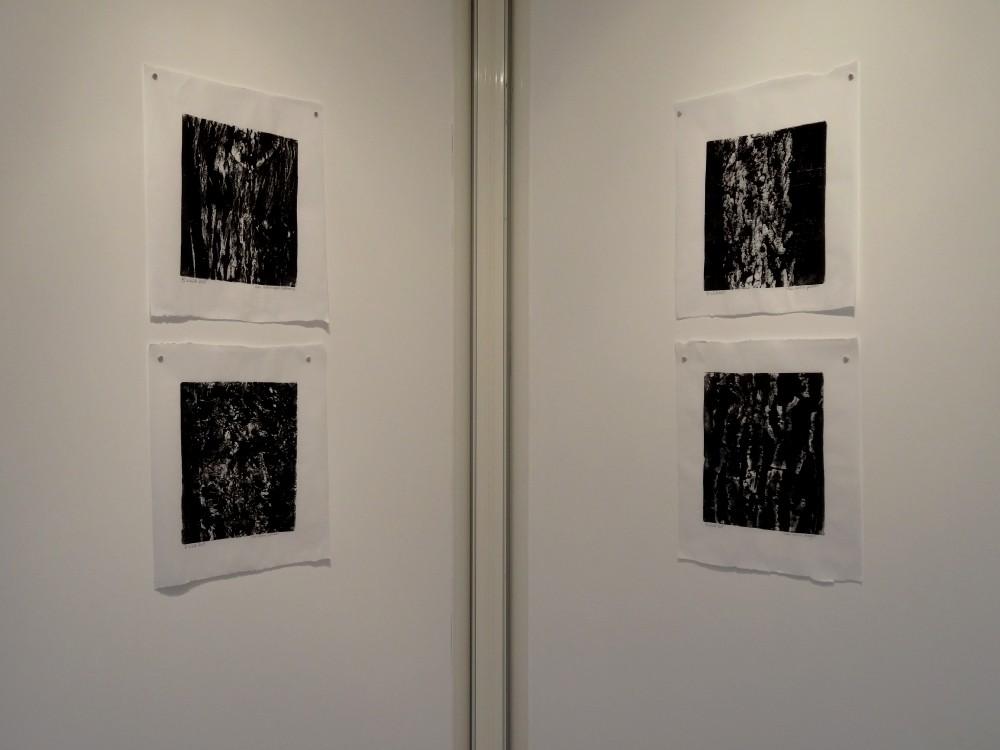 """Vue de l'exposition Cécile White, Empreinte carbone. """"Radiographies de mes voisins"""", 4 monotypes acryliques sur papier de lune, 46x53 cm pièce, 2015."""