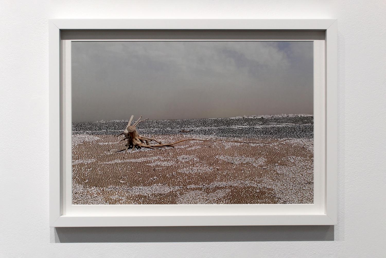 Raphaëlle Peria, Quand les eaux se retirent #1, grattage sur photographie, 30 x 45 cm, 2020
