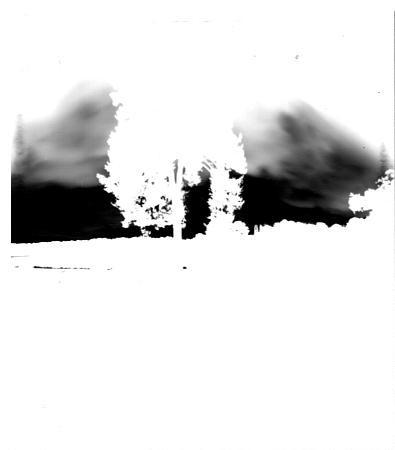 Atelier sténopé (négatif)
