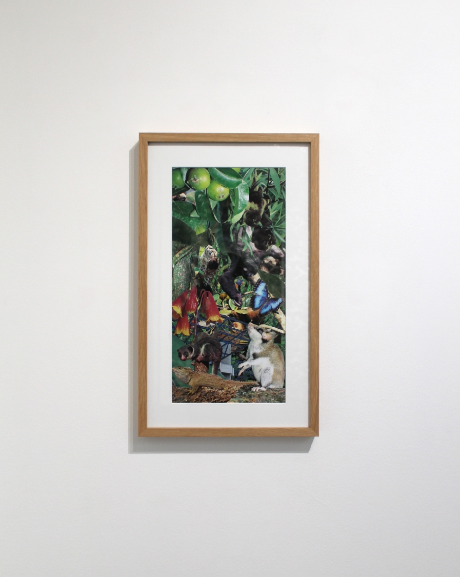 Bercy, 2019. Photographies découpées et collées sur papier, 52,5 x 30,5 cm