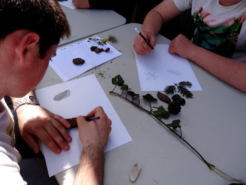 Dessin d'observation à partir des éléments végétaux et minéraux récoltés dans la nature