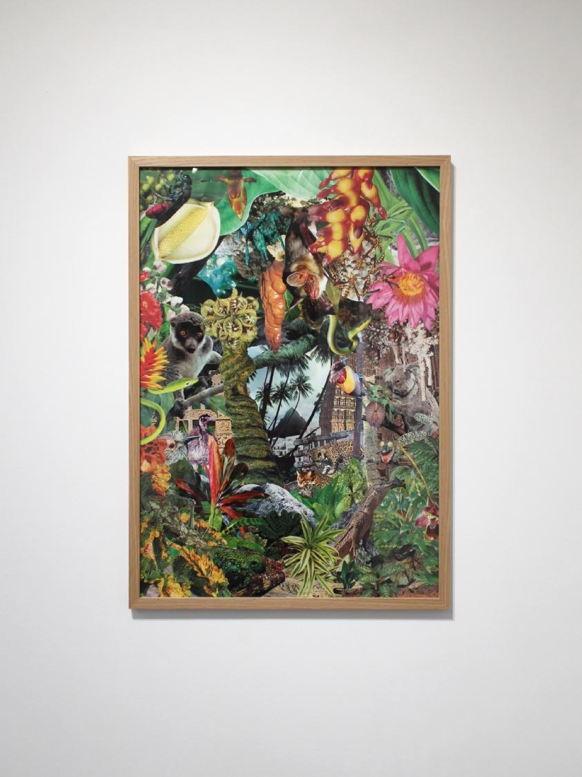 Paradise Island, 2020. Photographies découpées et collées sur papier, 81,5 x 58,1 cm