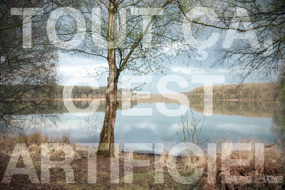 Les bras à terre, Lionel Pralus, 2012, série de photographies, 90 x 60