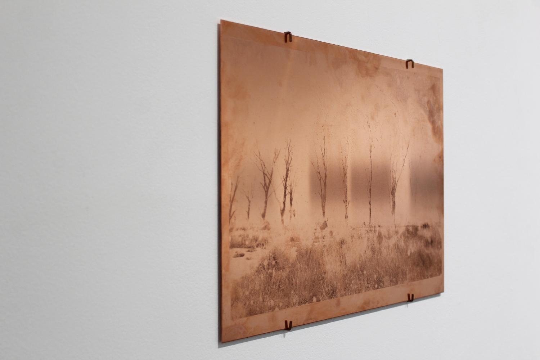 Raphaëlle Peria, Les fantômes d'Epecuén, transfert photographique sur cuivre, 30 x 40 cm, 2020