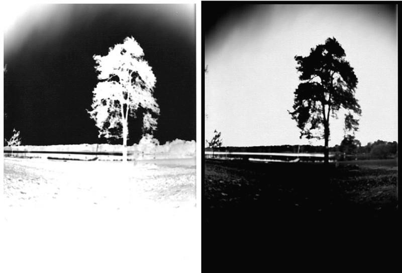 Développement photo (négatif) et passage en positif