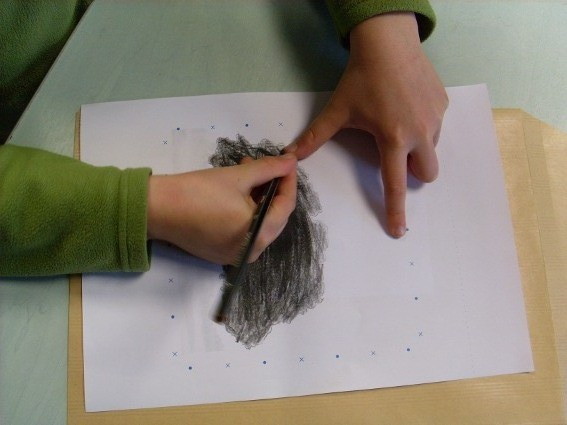 Jour 1 : Atelier contour et mise au carreau d'un arbre