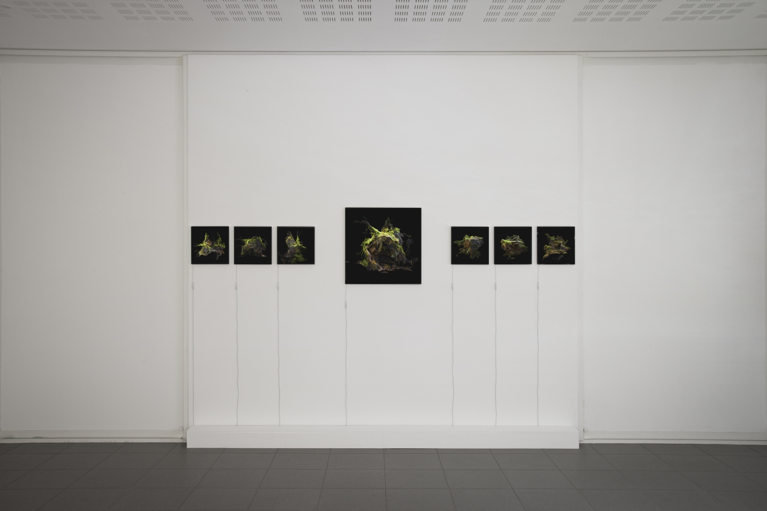 Vue de l'exposition Paul Duncombe, Microcosmes, 2017. Photo : Paul Duncombe