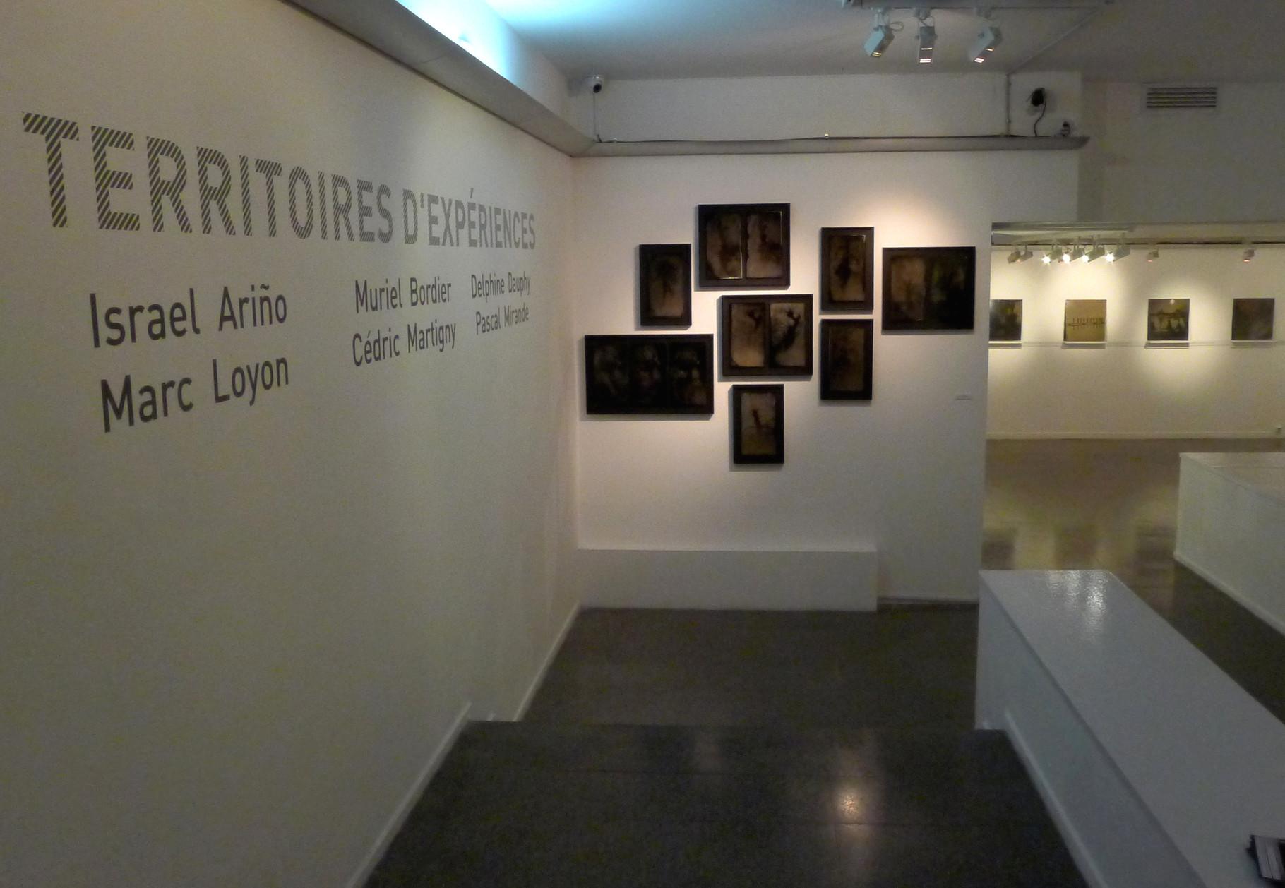 """""""Héliotropisme"""", série de photographies de Pascal Mirande. DR Israel Ariño"""