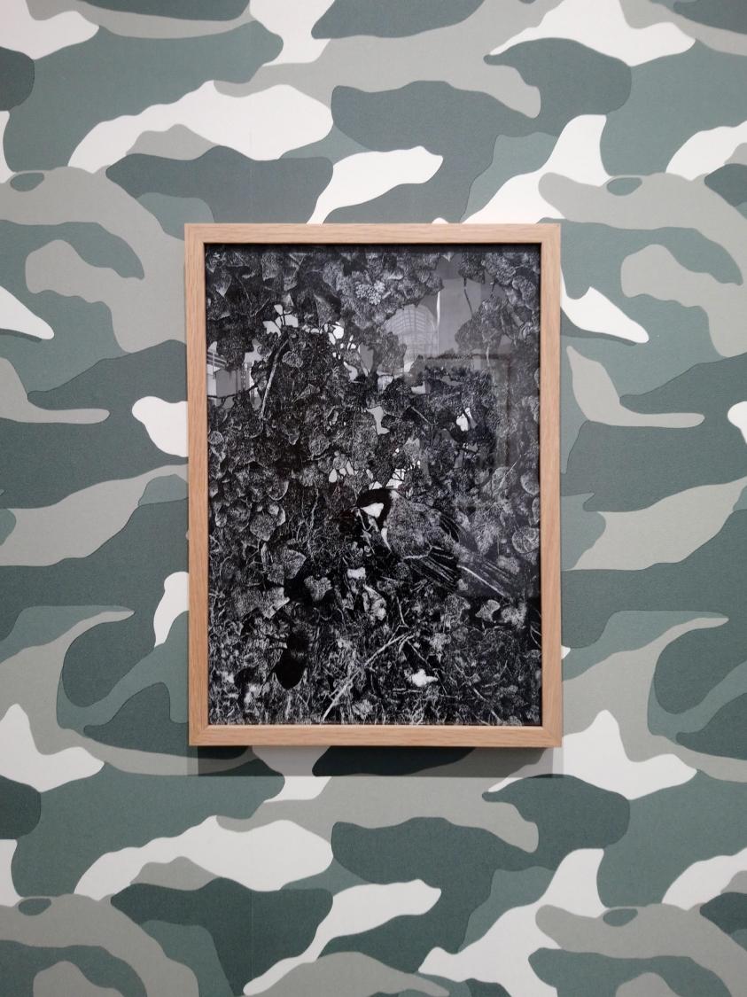 À vol d'oiseau #3, 2019. Encre de Chine sur papier calque, photographie, scotch, 42 x 29,7 cm