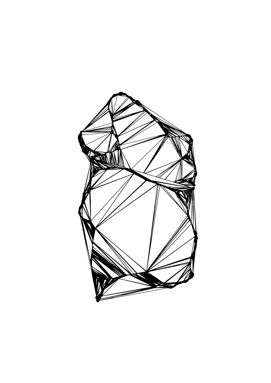 Leslie Chaudet, TIN (Triangulated Irregular Network), 2014. Visuel de l'édition éponyme.