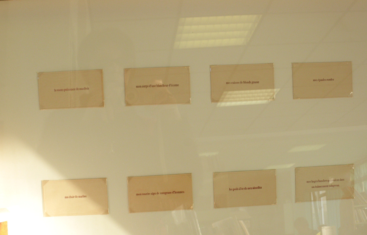 Vue d'exposition bibliothèque de Bédée - Sharon Kivland, Ma nana huit fois, 2005