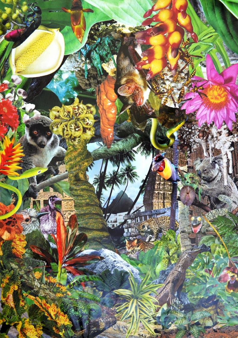 Quentin Montagne, Paradise Island, 2020. Photographies découpées et collées sur papier, 81,5 x 58,1 cm.