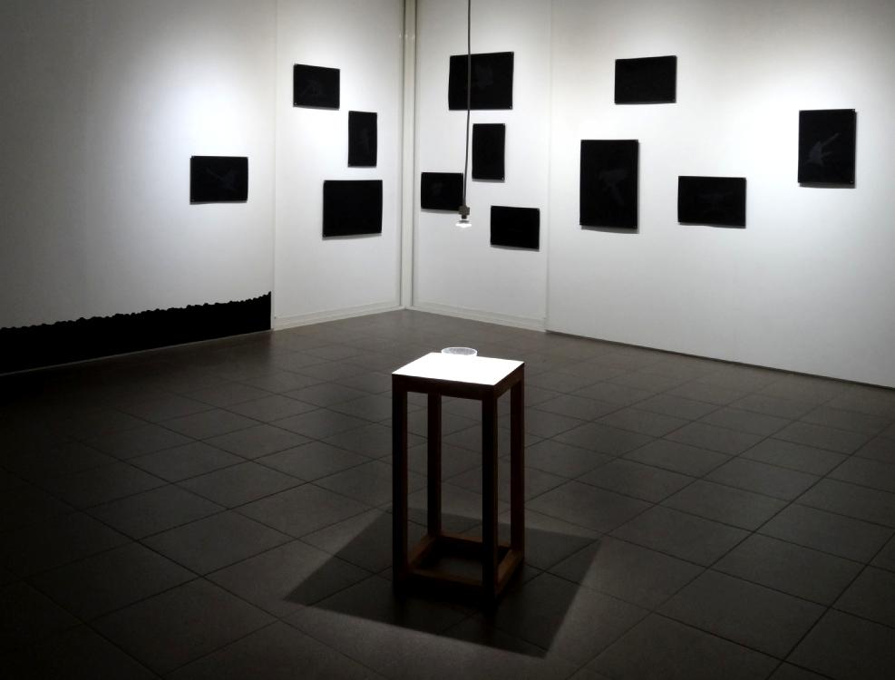 Vue de l'exposition Carlos Bernal, Souvenir de l'impermanence