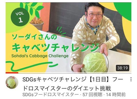 SDGsキャベツチャレンジ【1日目】SDGsフードロスマイスターのダイエット挑戦