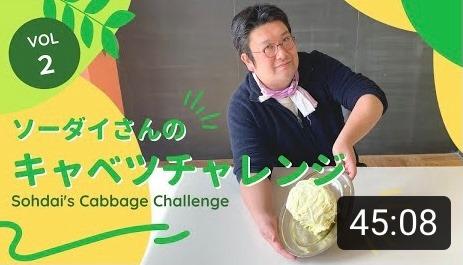 SDGsキャベツチャレンジ【2日目】SDGsフードロスマイスターのダイエット挑戦