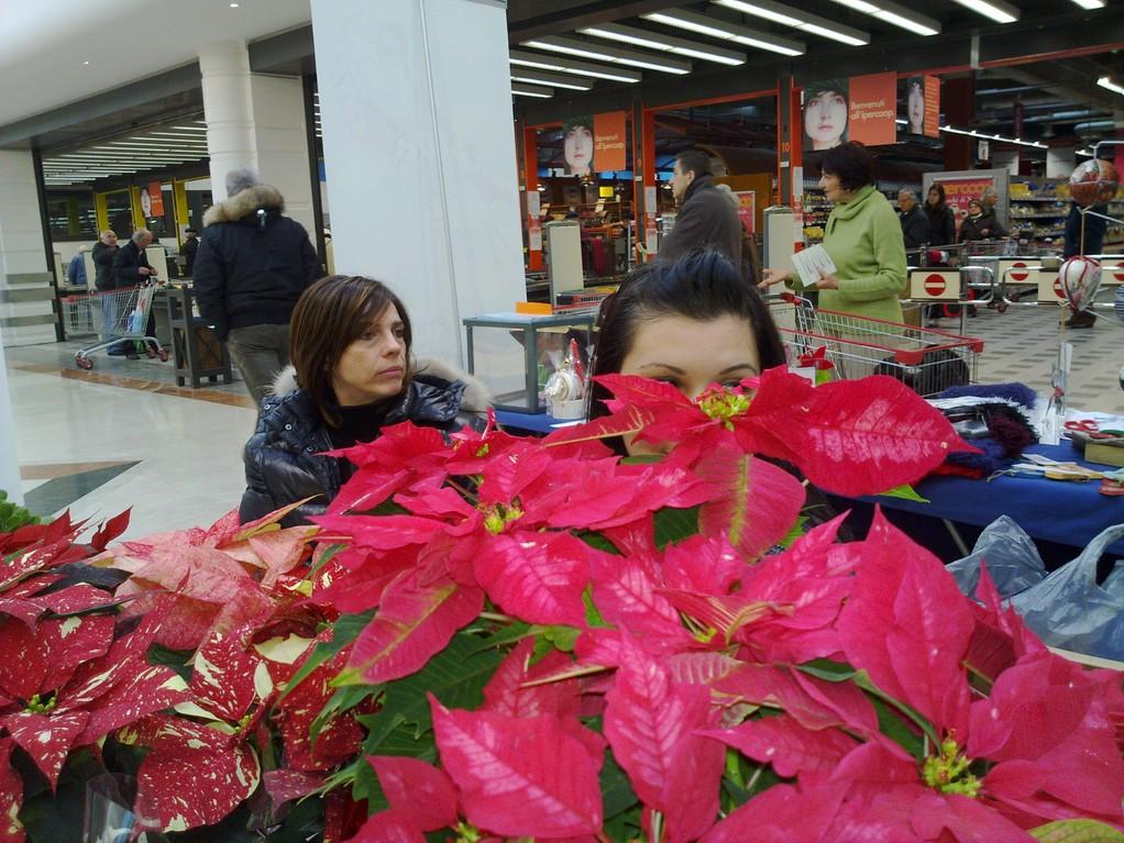 """Raccolta fondi Martedì 21 Dicembre 2010 - Centro commerciale """"Il Castello"""" Susanna, Erica"""