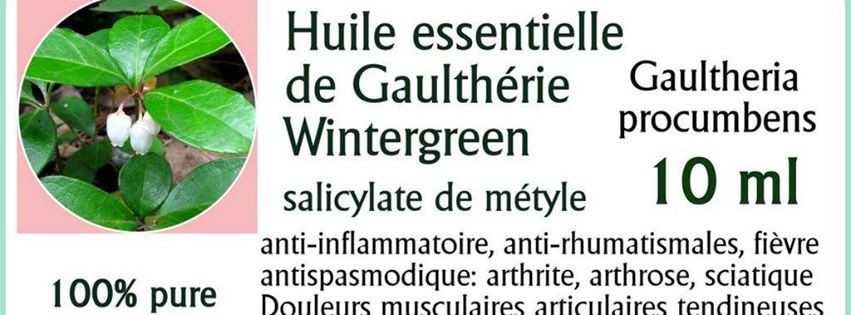 Huile essentielle de gaulth rie bio naturopathie - Huiles essentielles gaultherie couchee ...