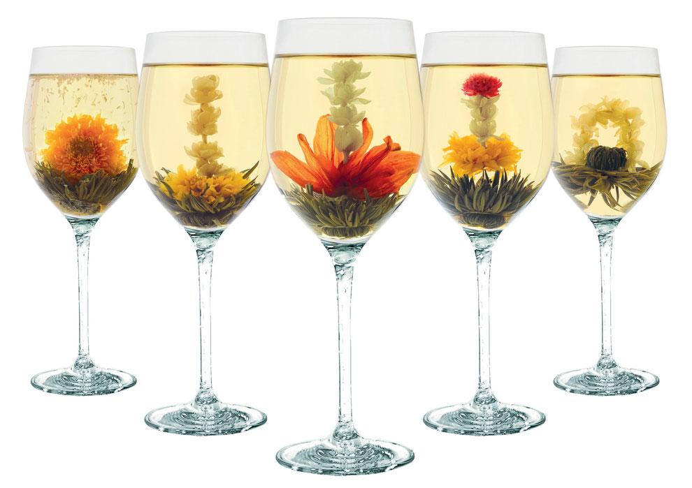 Collection de fleurs de thé