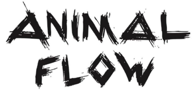 ANIMAL FLOWについて!