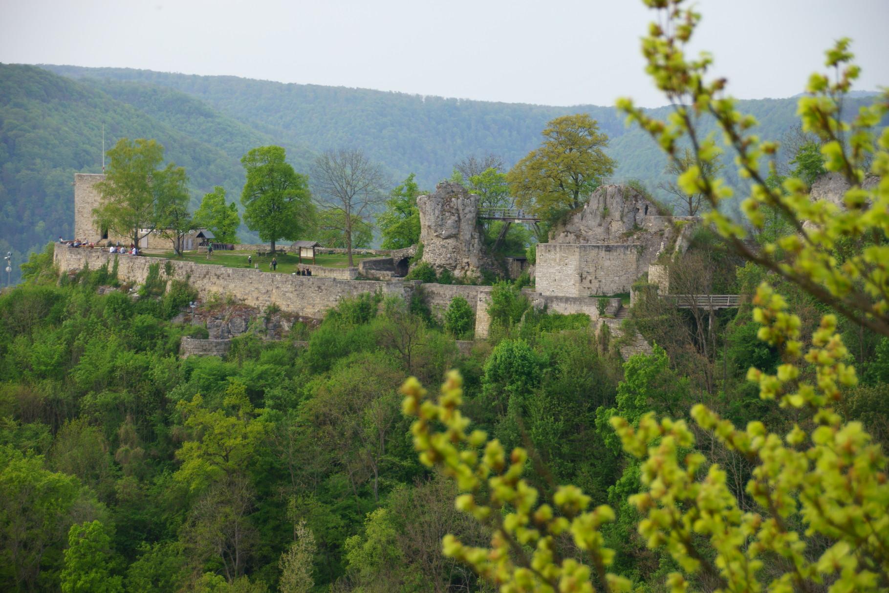 Burgruine Helfenstein