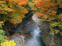 千代鶴 あきる野 自然環境