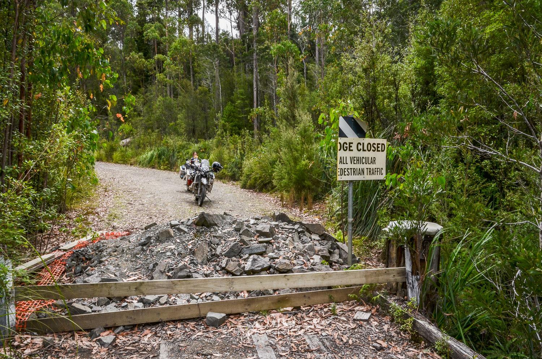 Unsere Begegnung mit dem Tasmanischen Teufel - Reisebericht Australien (Tasmanien)