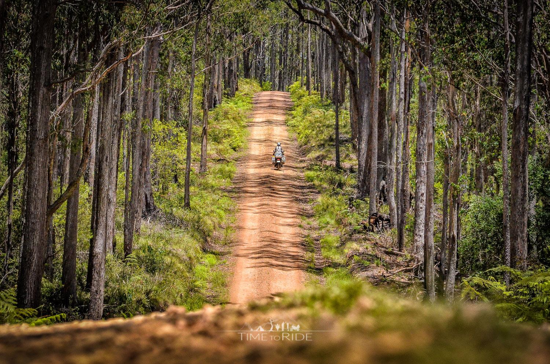 Auf kleinen Schotterstrecken durchs Hinterland - Reisebericht Australien