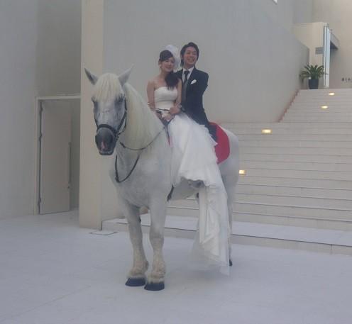 名古屋市の大通りに面した白い建物。道行く人の視線を浴びて2人が白馬に乗ると場の空気が変わる