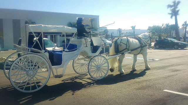 白いクラシカル馬車