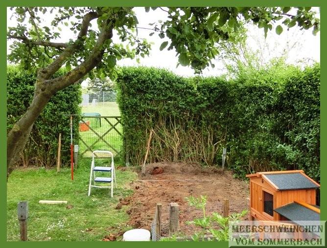 Das Gartentor passt ja dann auch nicht mehr ?! 31.05.2015