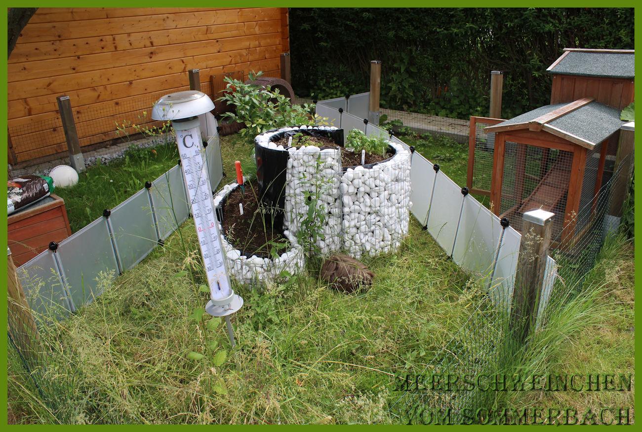 Der Außenbereich 06/17, damit das Gras nicht sofort vernichtet wird, teilen wir es in Abschnitten ein