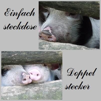 Schweinische Collage