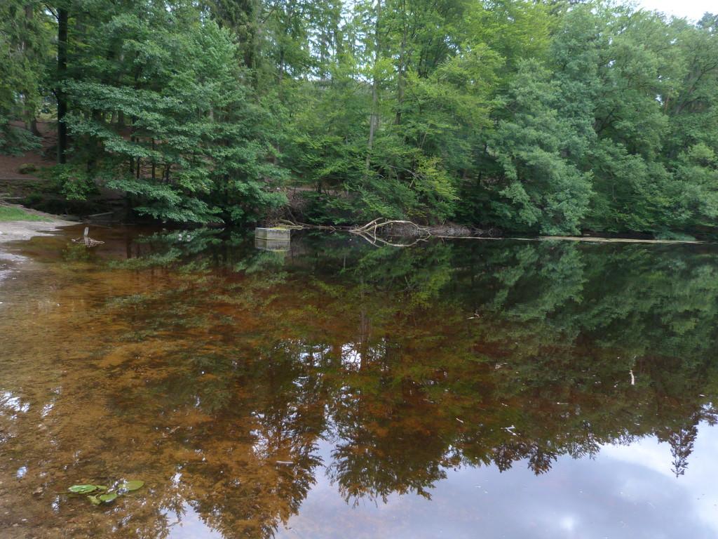 Donoper Teich