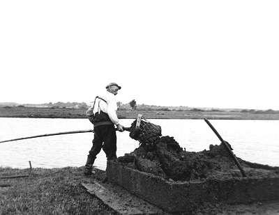 Der Kescher wird am Rand einer Moorkuhle nach oben gezogen und der so gewonnene Torf wird an Land in eine Torfkiste geworfen.