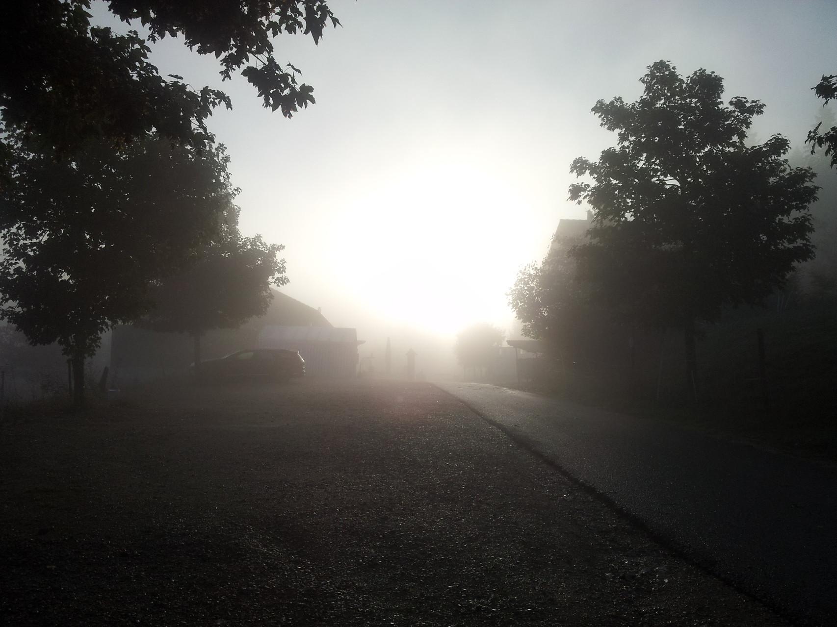 Morgenstimmung*.*
